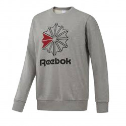 Sweat Reebok AC FT BIG STAR - DM5160
