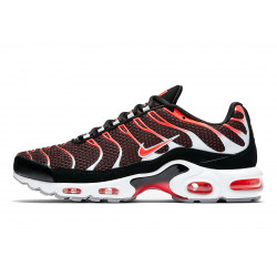 Baskets Nike AIR MAX PLUS - 852630-034